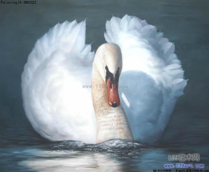 动物油画禽鸟动物油画天鹅